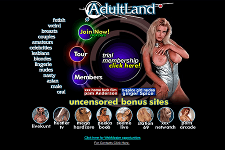 Adult Websites in the 90s